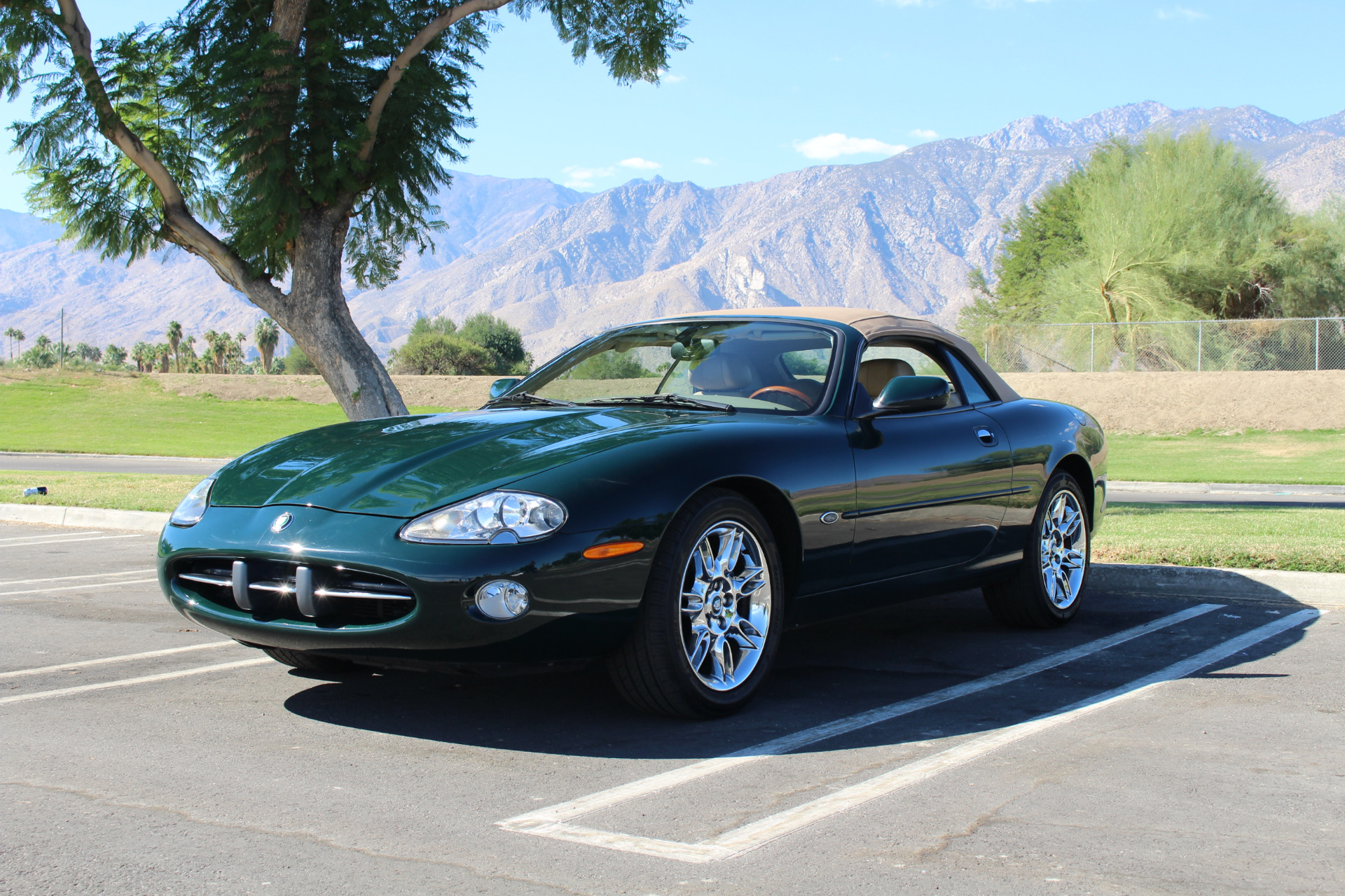 2002 Jaguar XK-Series XK8 Stock # JO257 for sale near Palm ...